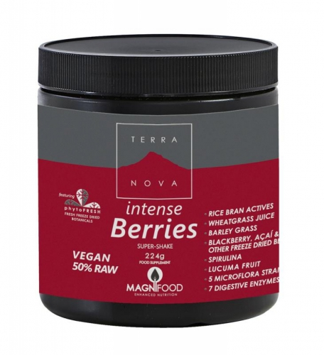Intense berries super shake 224 gram Terranova