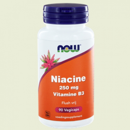 Niacine flush free 250mg 90 Kapseln NOW