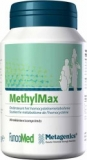 Methylmax 90t metagenics